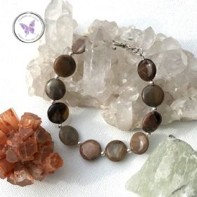 Petrified Wood Coin Bracelet with Silver Toggle Clasp